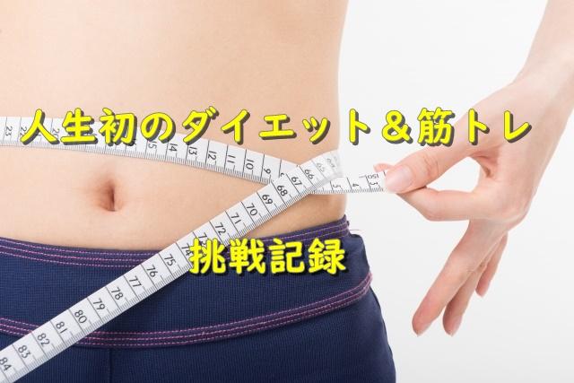 ダイエット挑戦記録